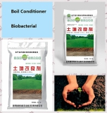 land betterment seaweed fertilizer