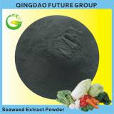 organic fertilizer 100% soluble ascophyllum nodosum extract fertilizer