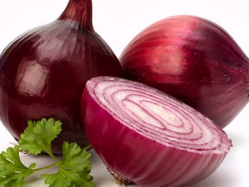 china fresh red onions